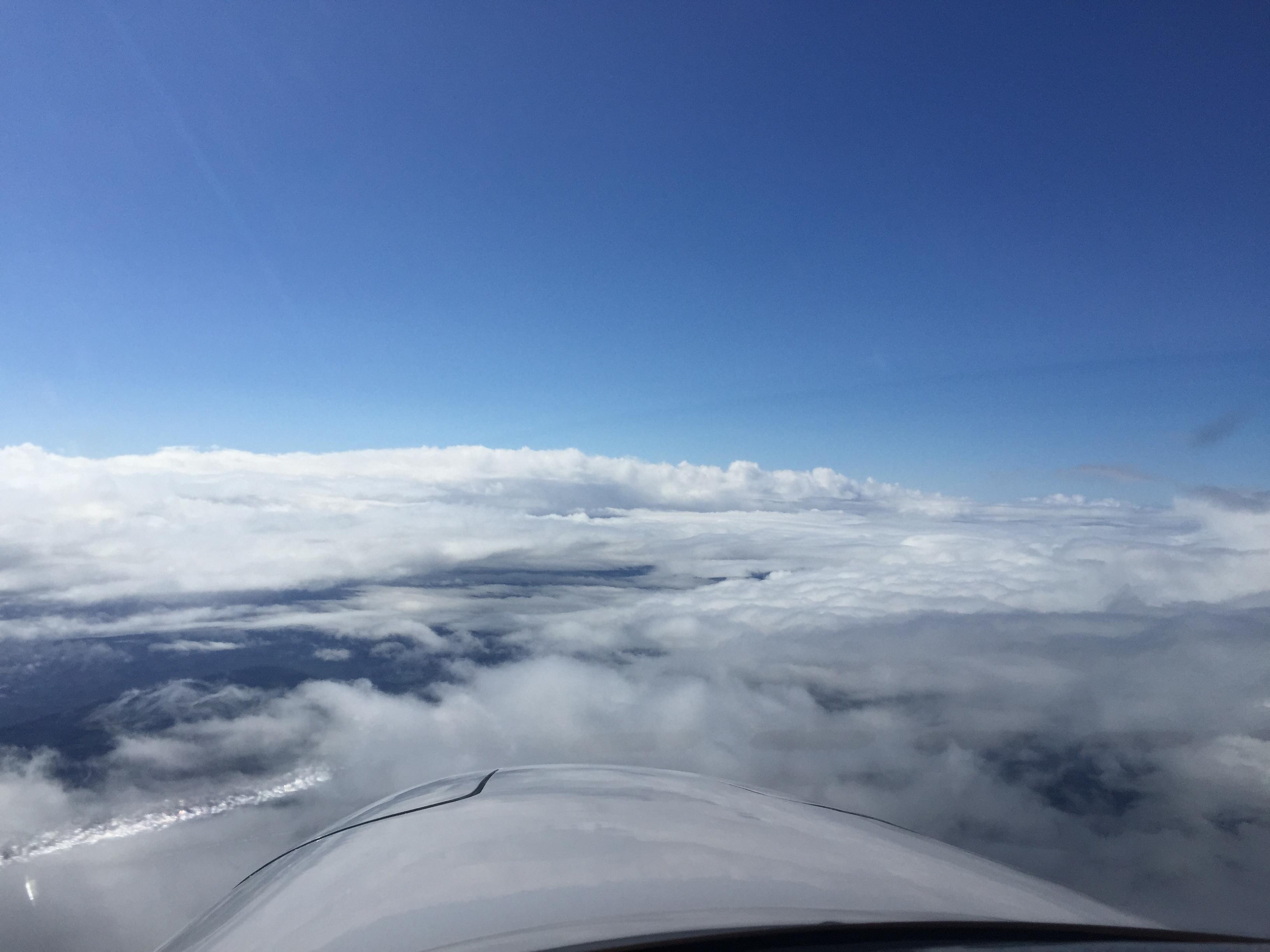 Flying Hope Vorstand